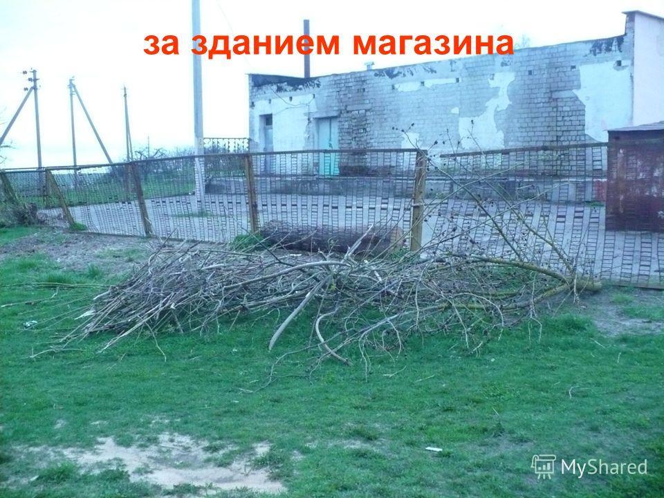 д.Залесье Чечерского районаза зданием магазина