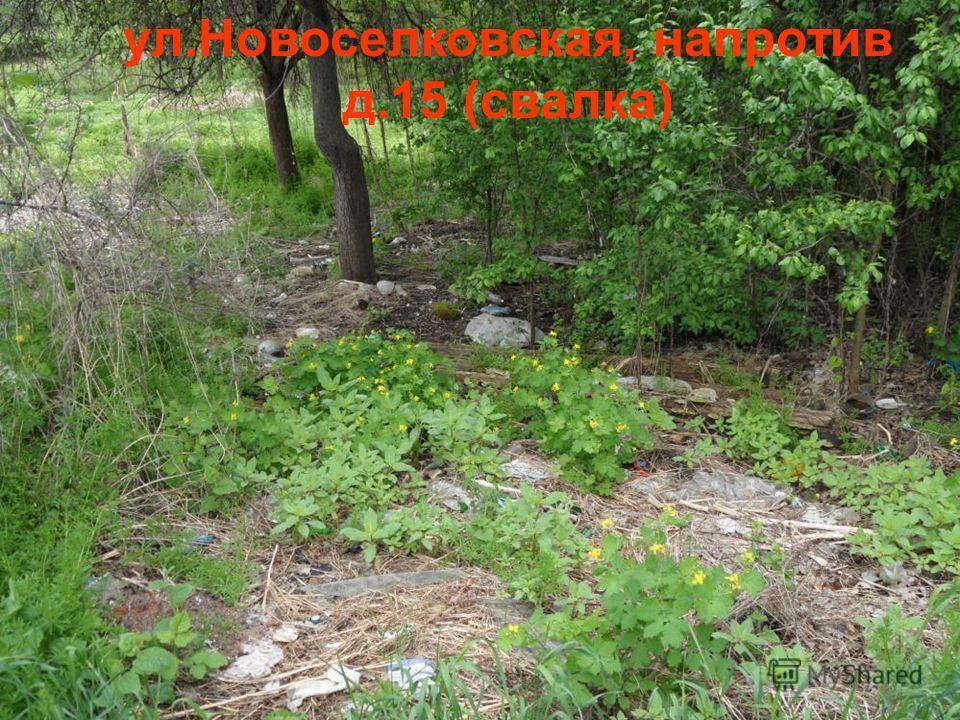 ул.Новоселковская, напротив д.15 (свалка)