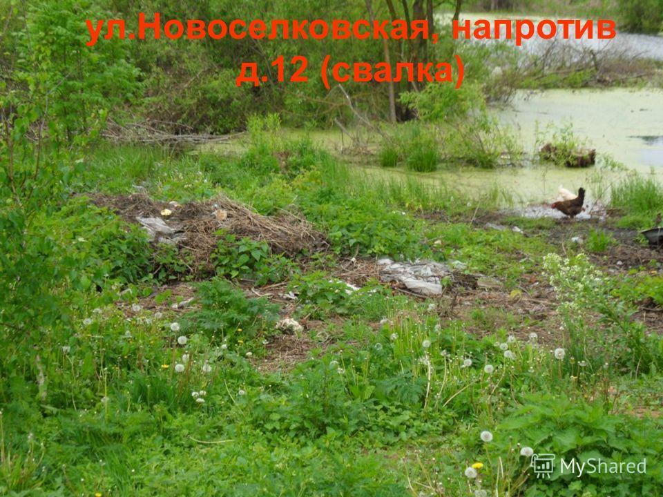 ул.Новоселковская, напротив д.12 (свалка)