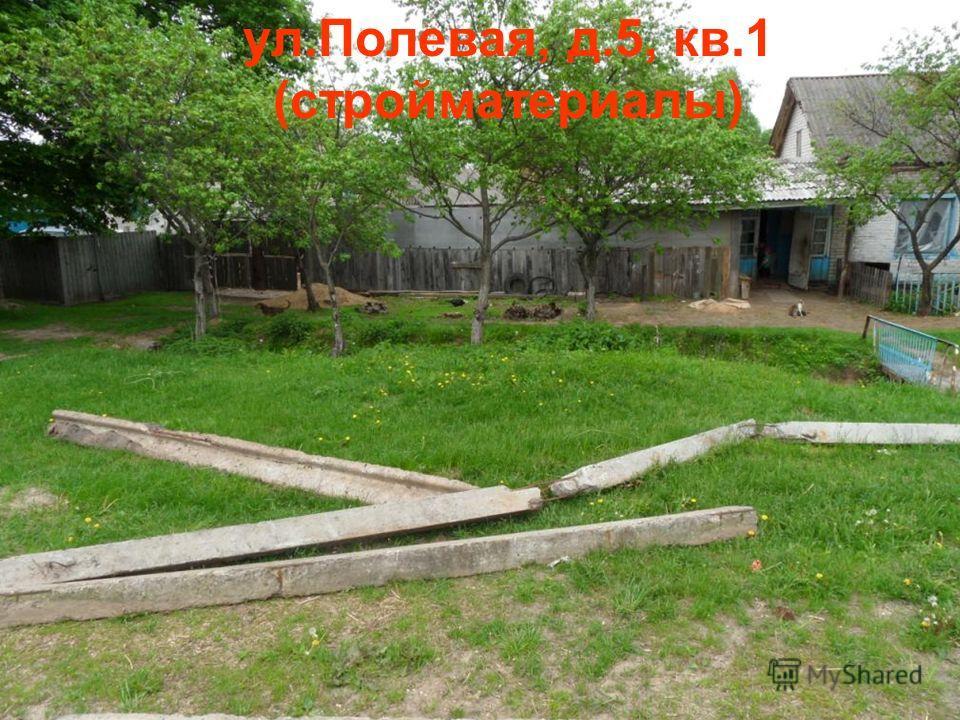 ул.Полевая, д.5, кв.1 (стройматериалы)