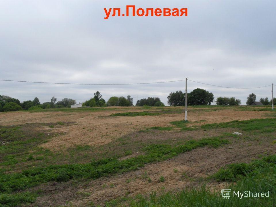 ул.Полевая