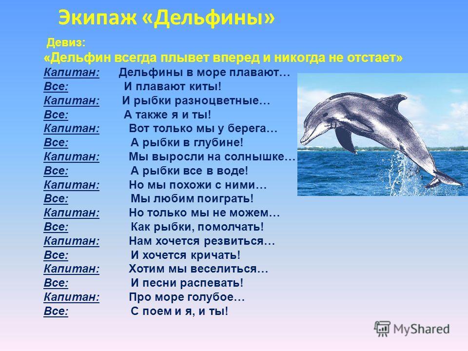Экипаж «Дельфины» Девиз: «Дельфин всегда плывет вперед и никогда не отстает» Капитан: Дельфины в море плавают… Все: И плавают киты! Капитан: И рыбки разноцветные… Все: А также я и ты! Капитан: Вот только мы у берега… Все: А рыбки в глубине! Капитан: