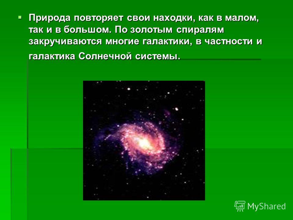 Природа повторяет свои находки, как в малом, так и в большом. По золотым спиралям закручиваются многие галактики, в частности и галактика Солнечной системы. Природа повторяет свои находки, как в малом, так и в большом. По золотым спиралям закручивают