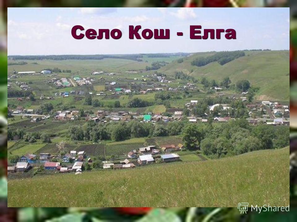 Село Кош - Елга