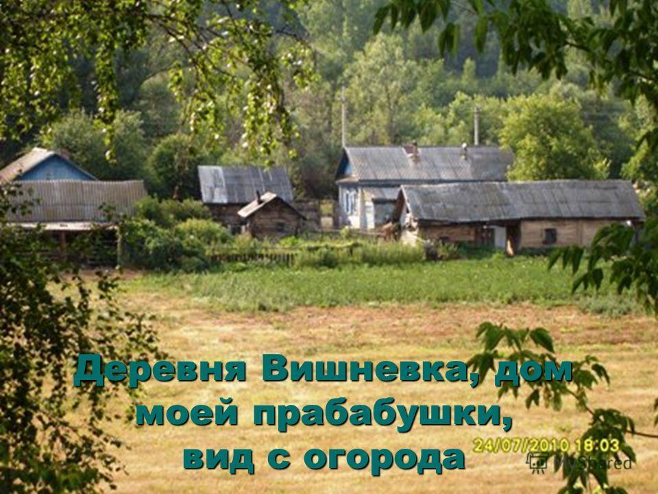 Деревня Вишневка, дом моей прабабушки, вид с огорода