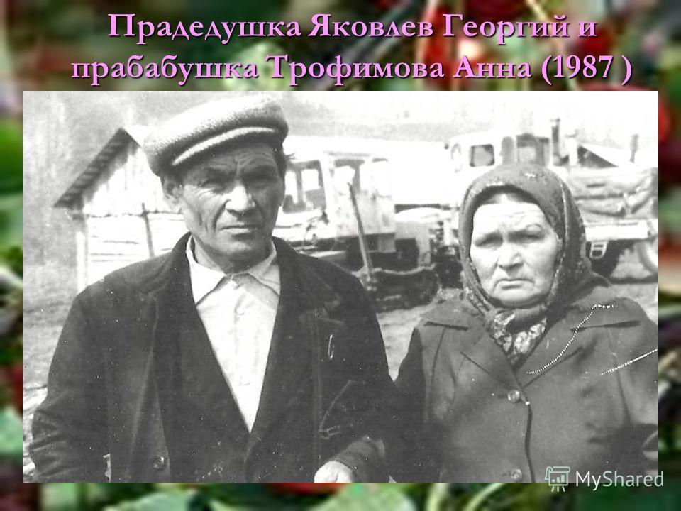 Прадедушка Яковлев Георгий и прабабушка Трофимова Анна (1987 )