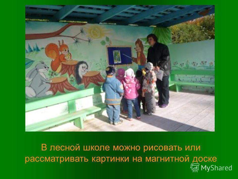 В лесной школе можно рисовать или рассматривать картинки на магнитной доске