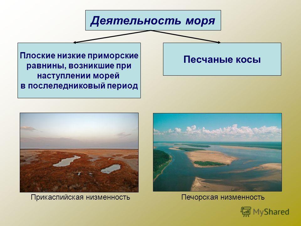 Деятельность моря Плоские низкие приморские равнины, возникшие при наступлении морей в послеледниковый период Песчаные косы Прикаспийская низменностьПечорская низменность