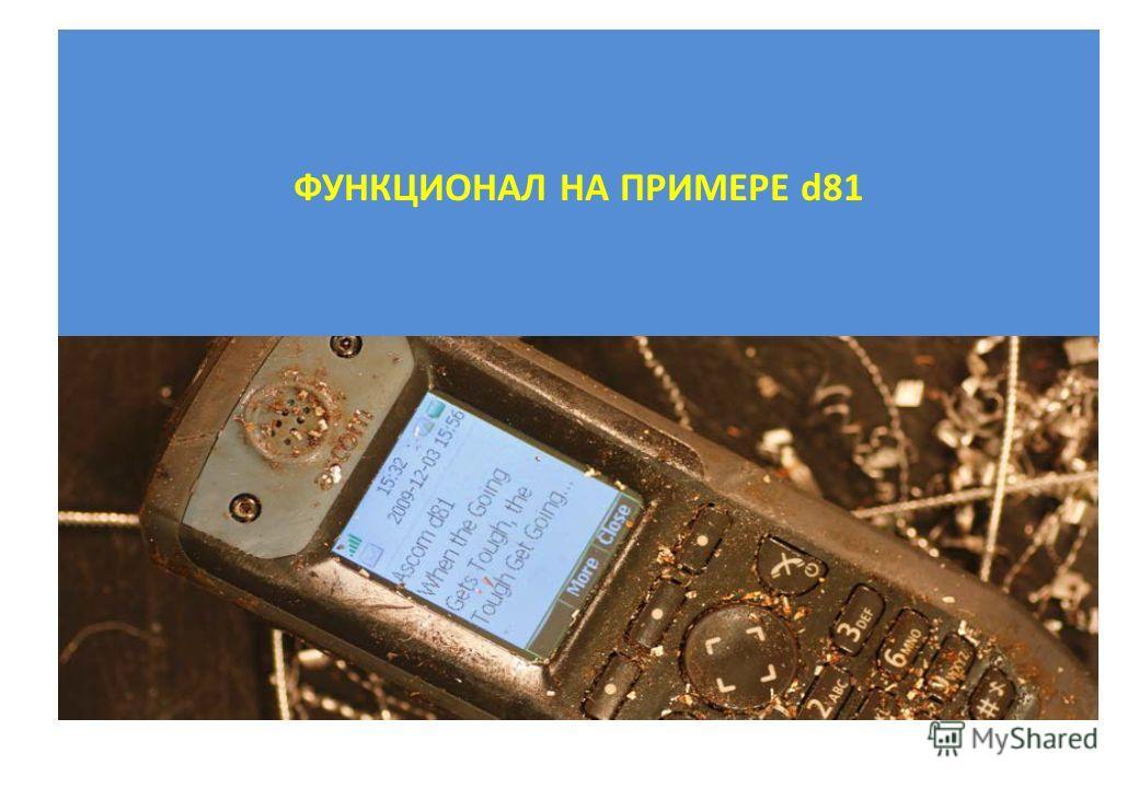 ФУНКЦИОНАЛ НА ПРИМЕРЕ d81