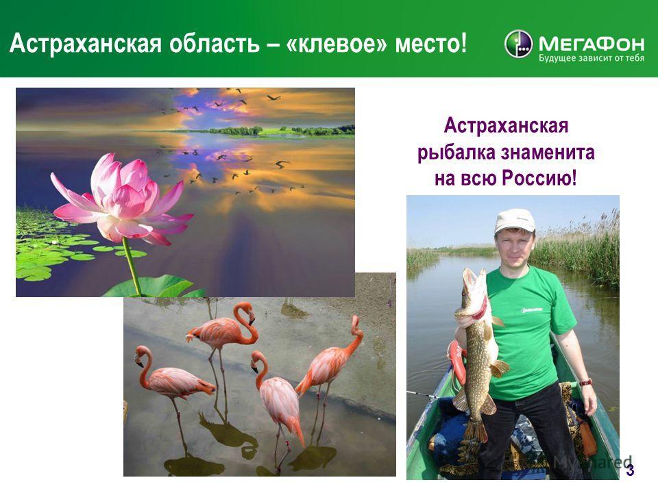 3 Астраханская область – «клевое» место! Астраханская рыбалка знаменита на всю Россию!