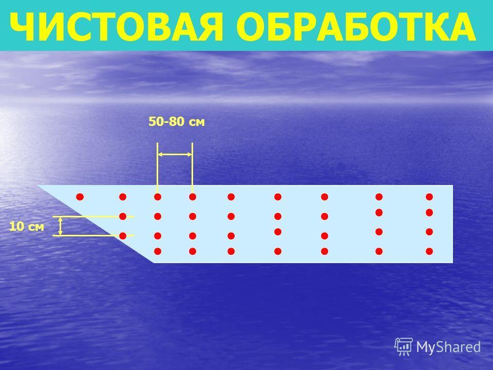 ВЯЗУШКИ (СТОРОЖКИ) 1 см 2 см