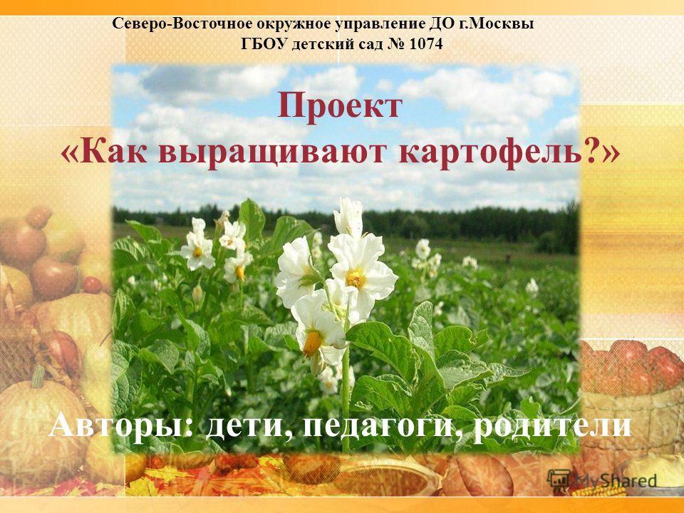 Проект «Как выращивают картофель?» Авторы: дети, педагоги, родители Северо-Восточное окружное управление ДО г.Москвы ГБОУ детский сад 1074