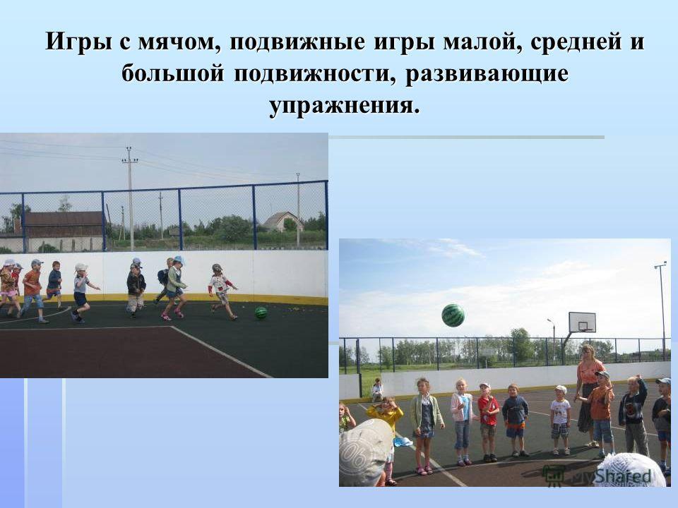 Игры с мячом, подвижные игры малой, средней и большой подвижности, развивающие упражнения.