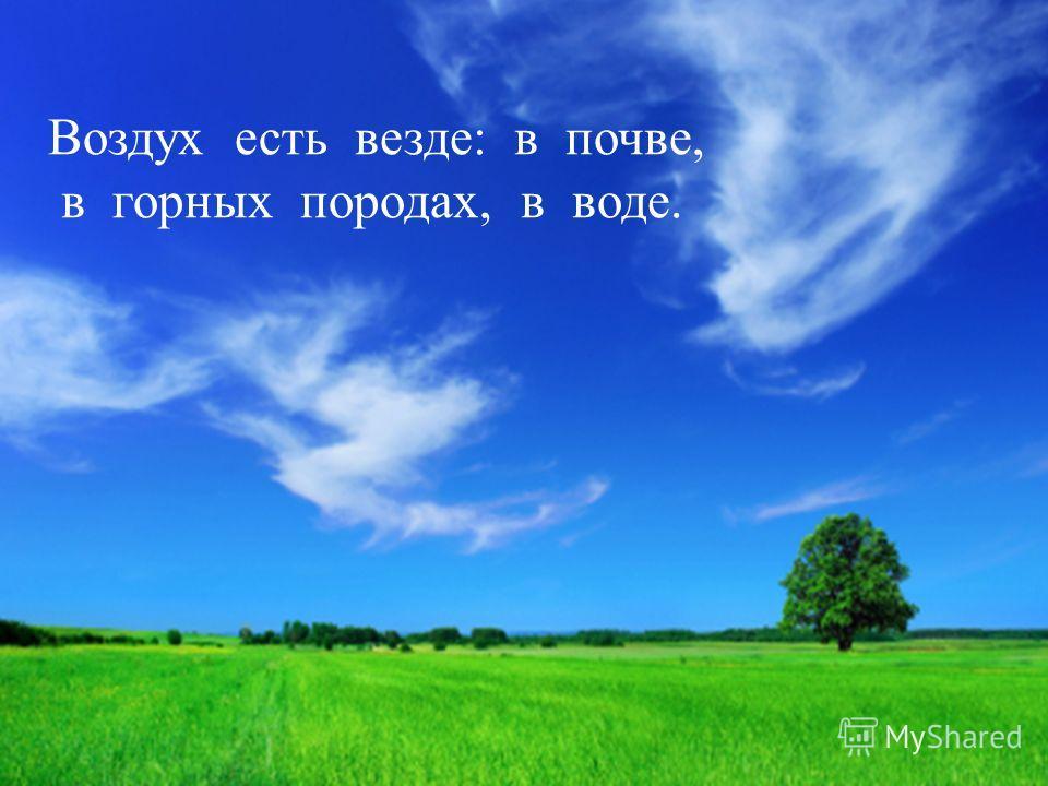 Воздух есть везде: в почве, в горных породах, в воде.