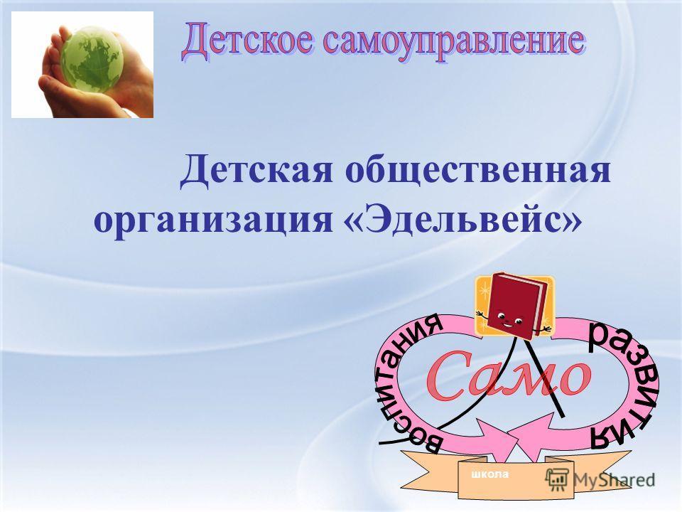 Детская общественная организация «Эдельвейс» школа