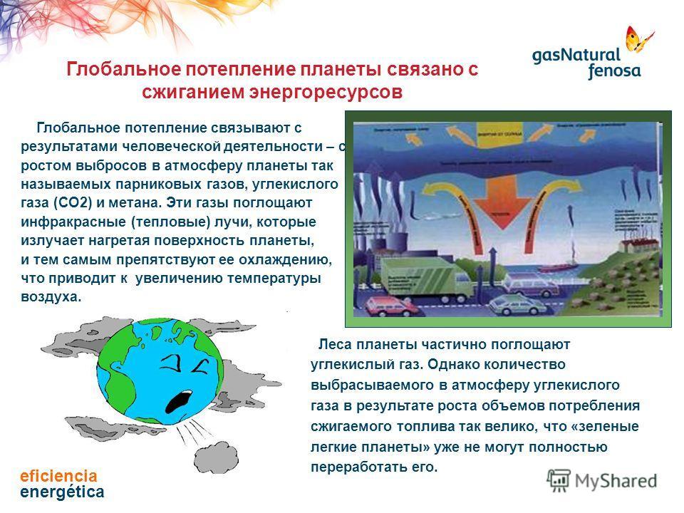 Глобальное потепление связывают с результатами человеческой деятельности – с ростом выбросов в атмосферу планеты так называемых парниковых газов, углекислого газа (СО2) и метана. Эти газы поглощают инфракрасные (тепловые) лучи, которые излучает нагре