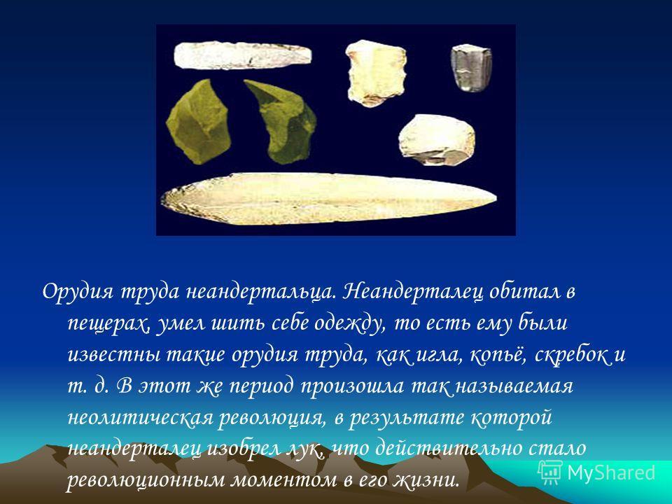 Орудия труда неандертальца. Неандерталец обитал в пещерах, умел шить себе одежду, то есть ему были известны такие орудия труда, как игла, копьё, скребок и т. д. В этот же период произошла так называемая неолитическая революция, в результате которой н