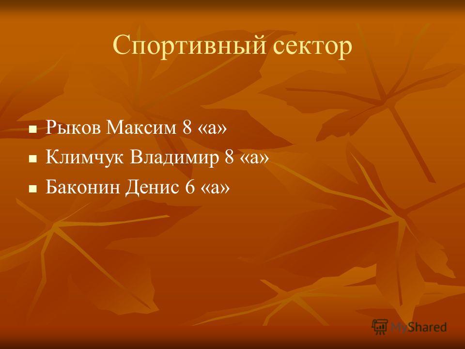 Спортивный сектор Рыков Максим 8 «а» Климчук Владимир 8 «а» Баконин Денис 6 «а»