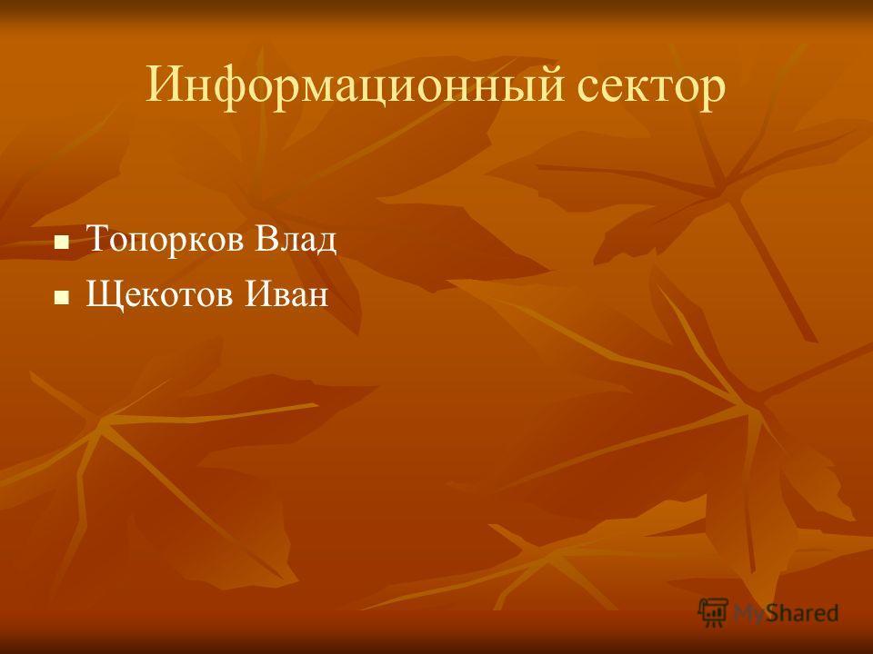 Информационный сектор Топорков Влад Щекотов Иван