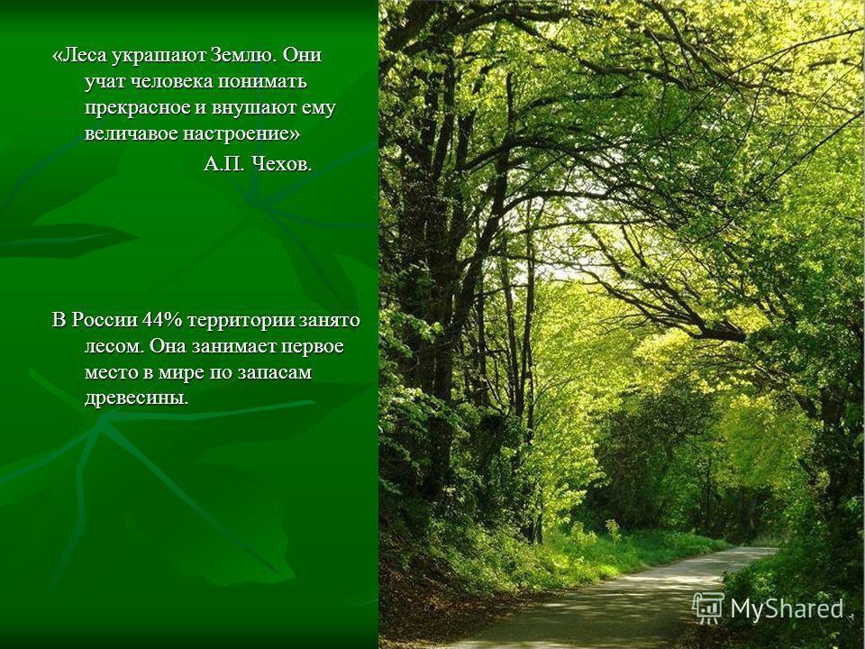«Леса украшают Землю. Они учат человека понимать прекрасное и внушают ему величавое настроение» А.П. Чехов. А.П. Чехов. В России 44% территории занято лесом. Она занимает первое место в мире по запасам древесины.