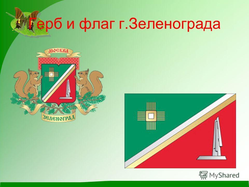 Герб и флаг г.Зеленограда