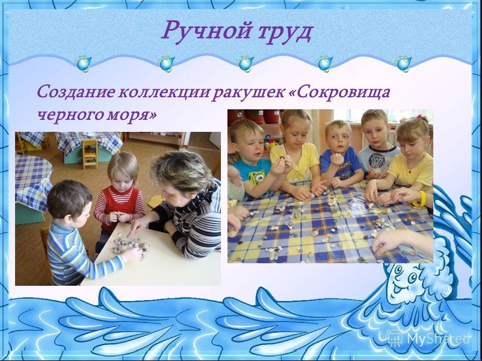 Ручной труд Создание коллекции ракушек «Сокровища черного моря»