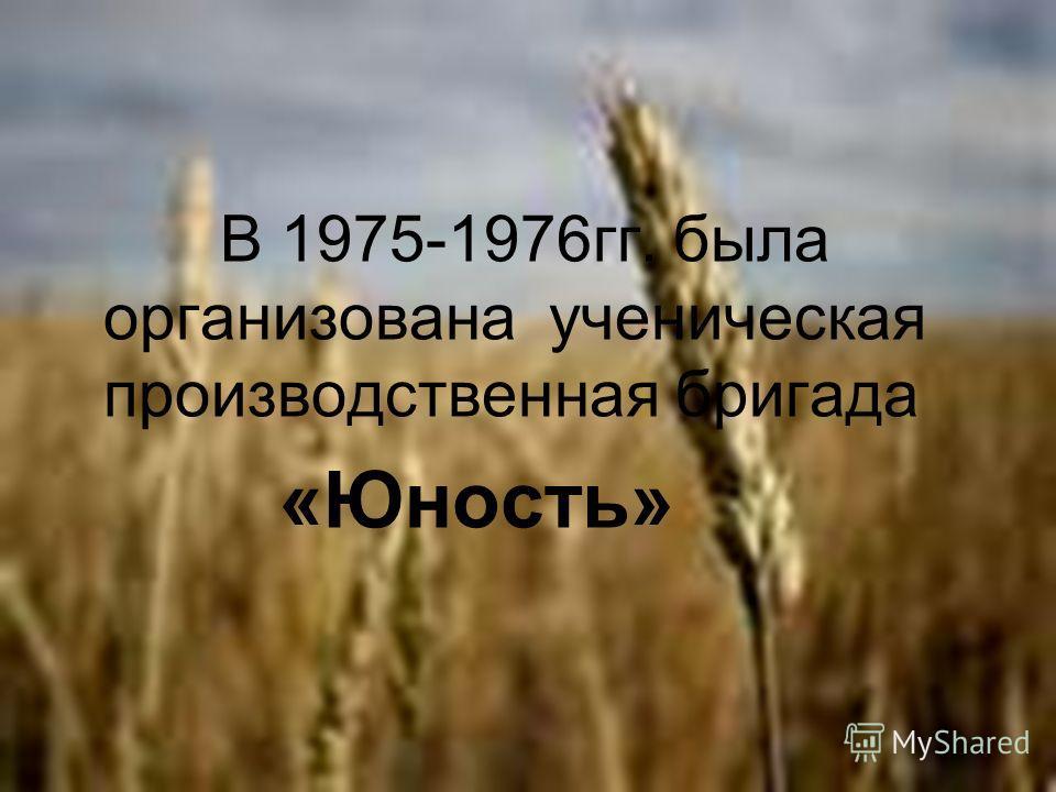 В 1975-1976гг. была организована ученическая производственная бригада «Юность»