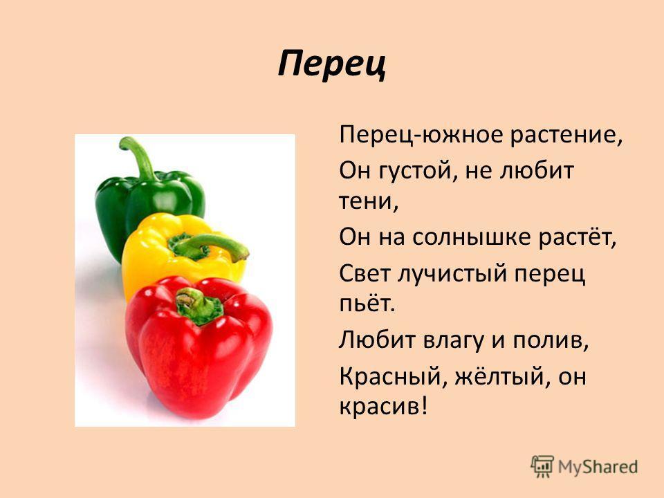 Перец Перец-южное растение, Он густой, не любит тени, Он на солнышке растёт, Свет лучистый перец пьёт. Любит влагу и полив, Красный, жёлтый, он красив!