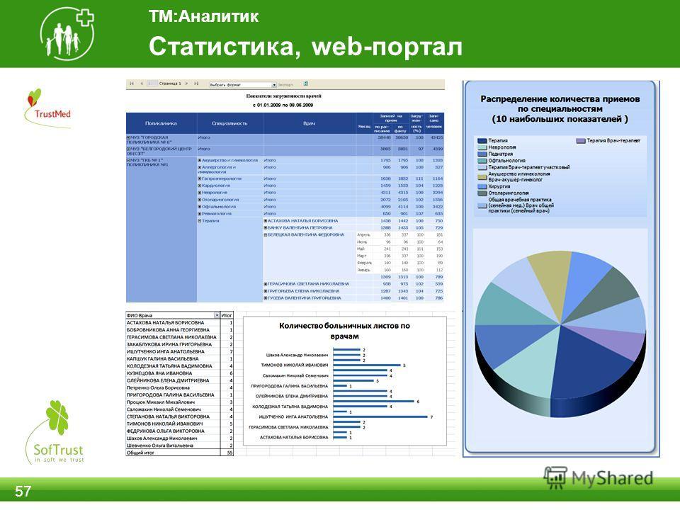 57 Статистика, web-портал ТМ:Аналитик