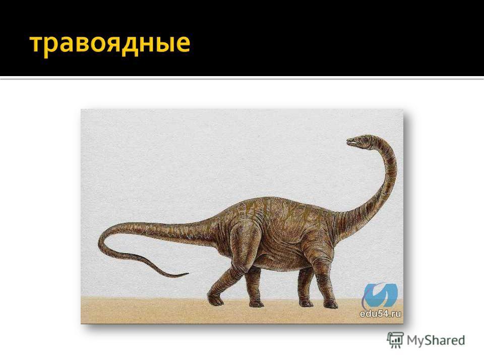 тираннозаври́ды (лат. Tyrannosauridae) семейство тероподных динозавров, вымерли в конце мелового периода (65 миллионов лет назад). Жили в Азии и в Северной Америке. Известны с раннего мела.лат.тероподных динозавровмелового периодаАзииСеверной Америке