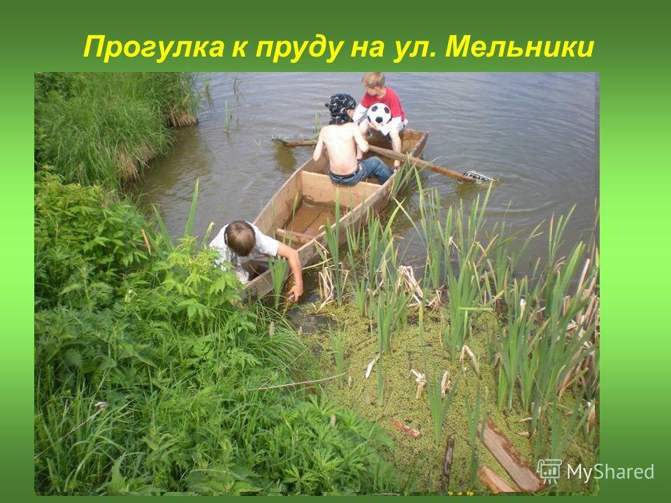 Прогулка к пруду на ул. Мельники