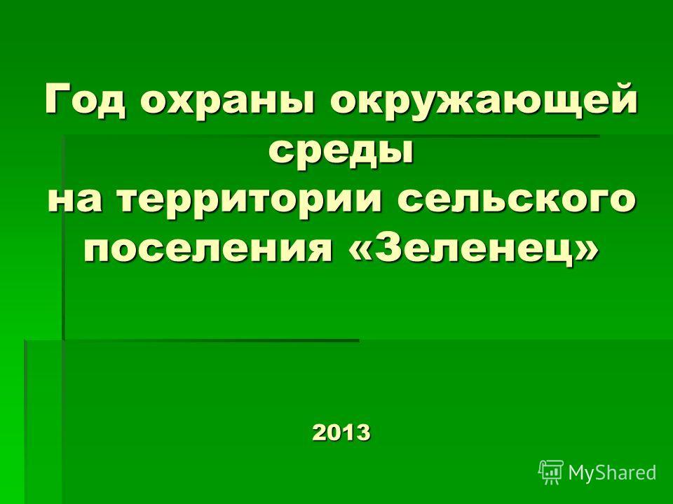 Год охраны окружающей среды на территории сельского поселения «Зеленец» 2013