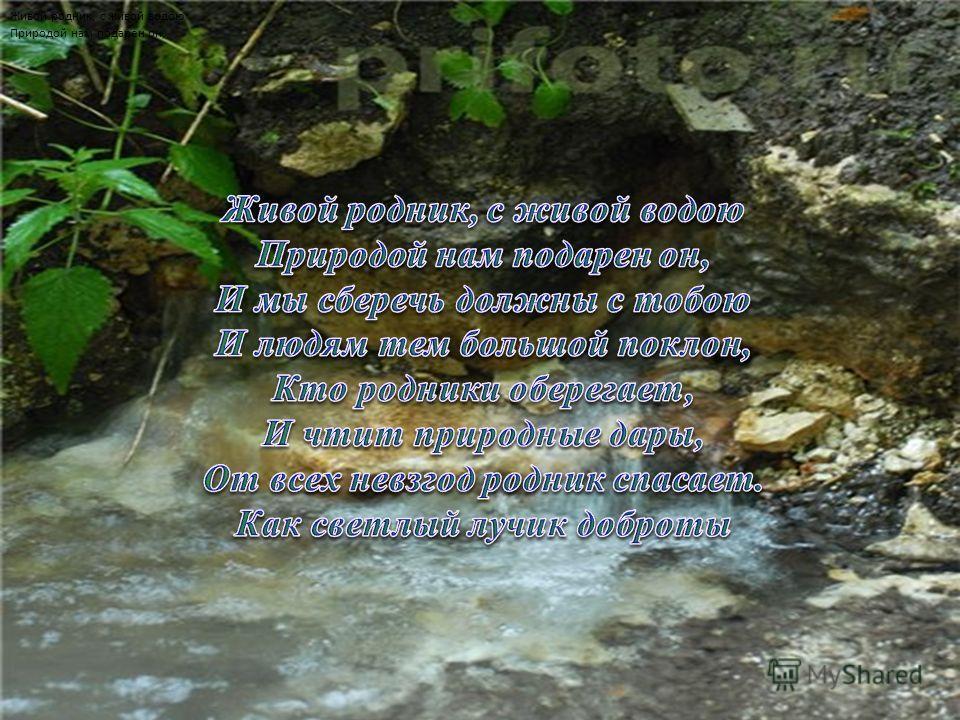 Живой родник, с живой водою Природой нам подарен он,