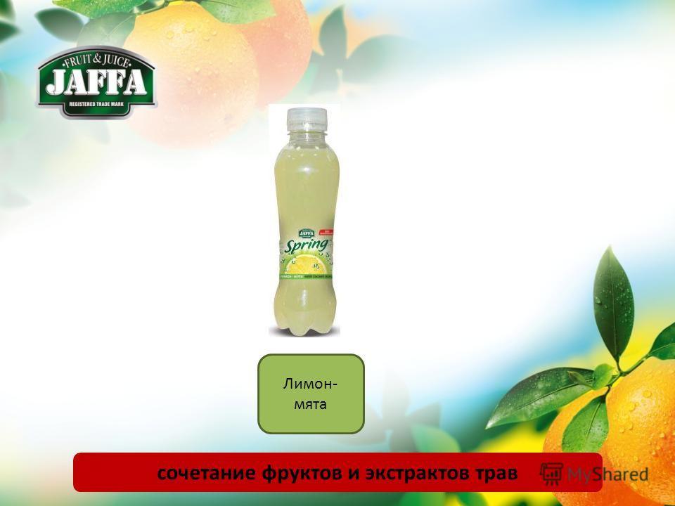 Лимон- мята сочетание фруктов и экстрактов трав
