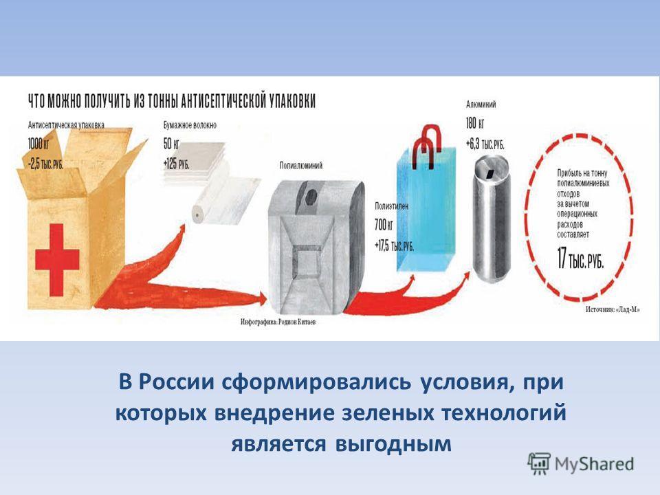 В России сформировались условия, при которых внедрение зеленых технологий является выгодным