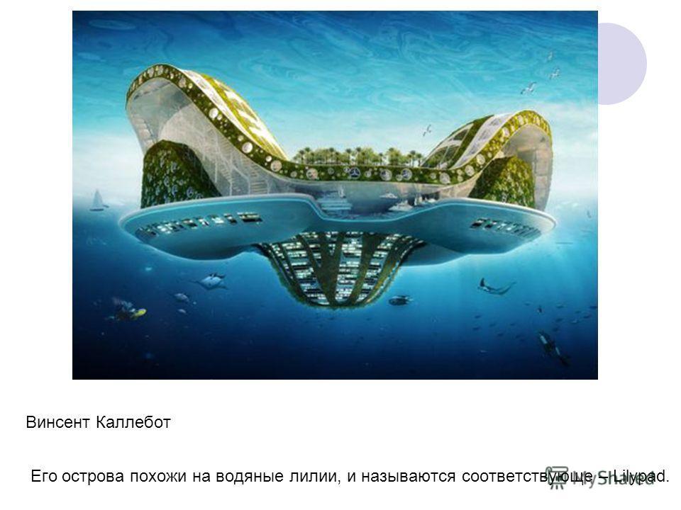 Винсент Каллебот Его острова похожи на водяные лилии, и называются соответствующе – Lilypad.