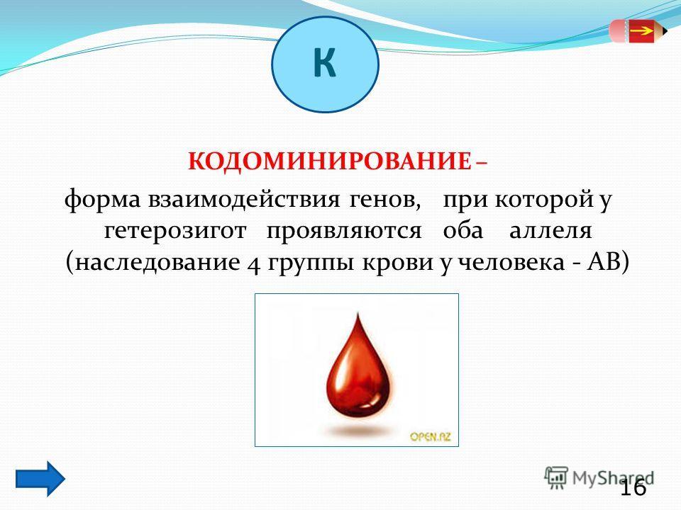 КОДОМИНИРОВАНИЕ – форма взаимодействия генов, при которой у гетерозигот проявляются оба аллеля (наследование 4 группы крови у человека - АВ) 16 К