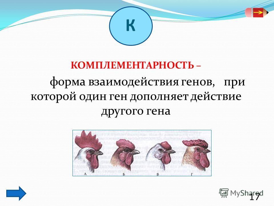 КОМПЛЕМЕНТАРНОСТЬ – форма взаимодействия генов, при которой один ген дополняет действие другого гена 17 К