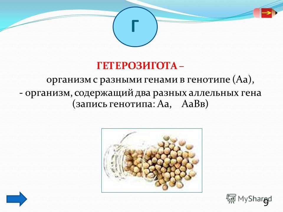 ГЕТЕРОЗИГОТА – организм с разными генами в генотипе (Аа), - организм, содержащий два разных аллельных гена (запись генотипа: Аа, АаВв) 9 Г