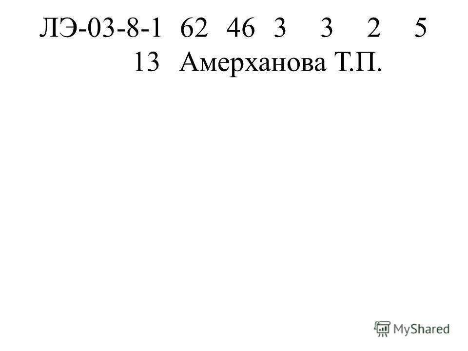 ЛЭ-03-8-162463325 13Амерханова Т.П.