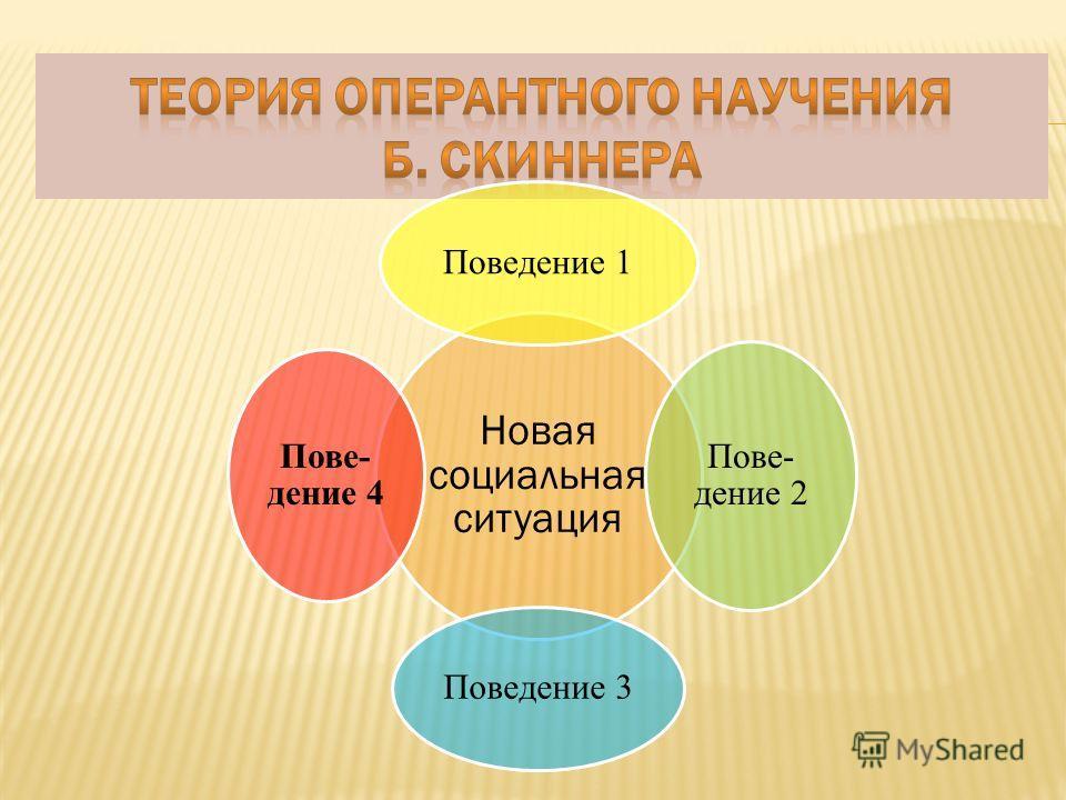 Новая социальная ситуация Поведение 1 Пове- дение 2 Поведение 3 Пове- дение 4