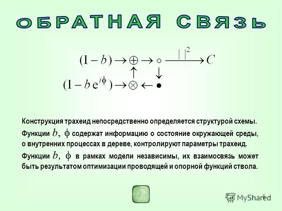 6 Конструкция трахеид непосредственно определяется структурой схемы. Функции b, содержат информацию о состояние окружающей среды, о внутренних процессах в дереве, контролируют параметры трахеид. Функции b, в рамках модели независимы, их взаимосвязь м