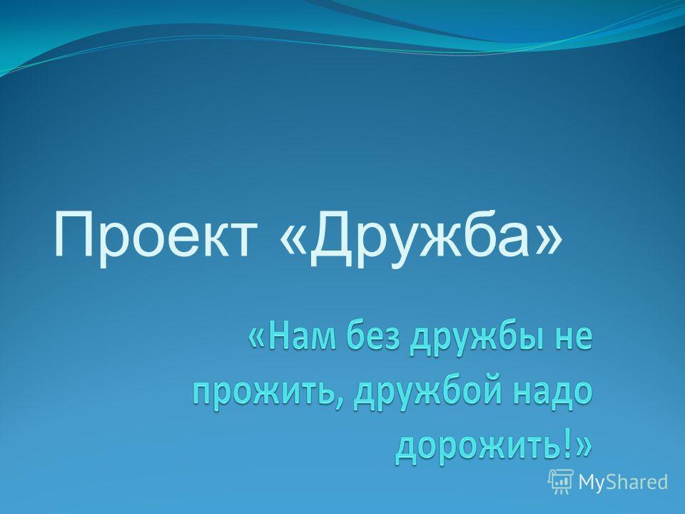 Проект «Дружба»