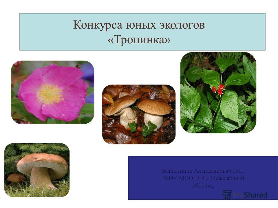 Выполнила Ахмедзянова С.М., МОУ МООШ П. Межозёрный 2011 год Конкурса юных экологов «Тропинка»