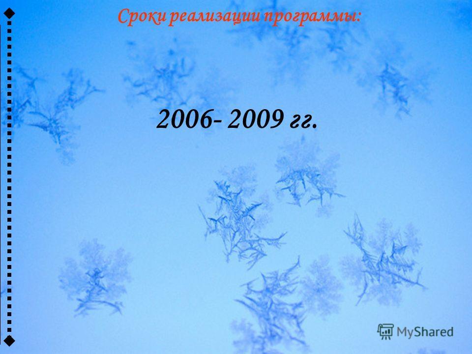 Сроки реализации программы: 2006- 2009 гг.