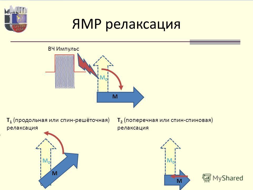 ЯМР релаксация M M0M0 M M0M0 T 1 (продольная или спин-решёточная) релаксация M0M0 M T 2 (поперечная или спин-спиновая) релаксация ВЧ Импульс