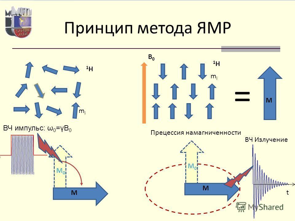 Принцип метода ЯМР B0B0 1H1H mimi = M 1H1H mimi ВЧ импульс: ω 0 =γB 0 M M0M0 M M0M0 Прецессия намагниченности ВЧ Излучение t