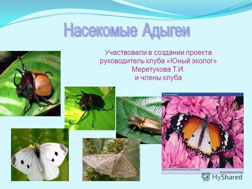 Участвовали в создании проекта руководитель клуба «Юный эколог» Меретукова Т.И. и члены клуба