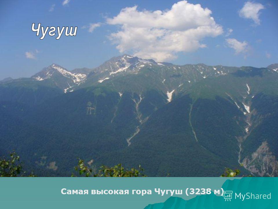 Самая высокая гора Чугуш (3238 м)