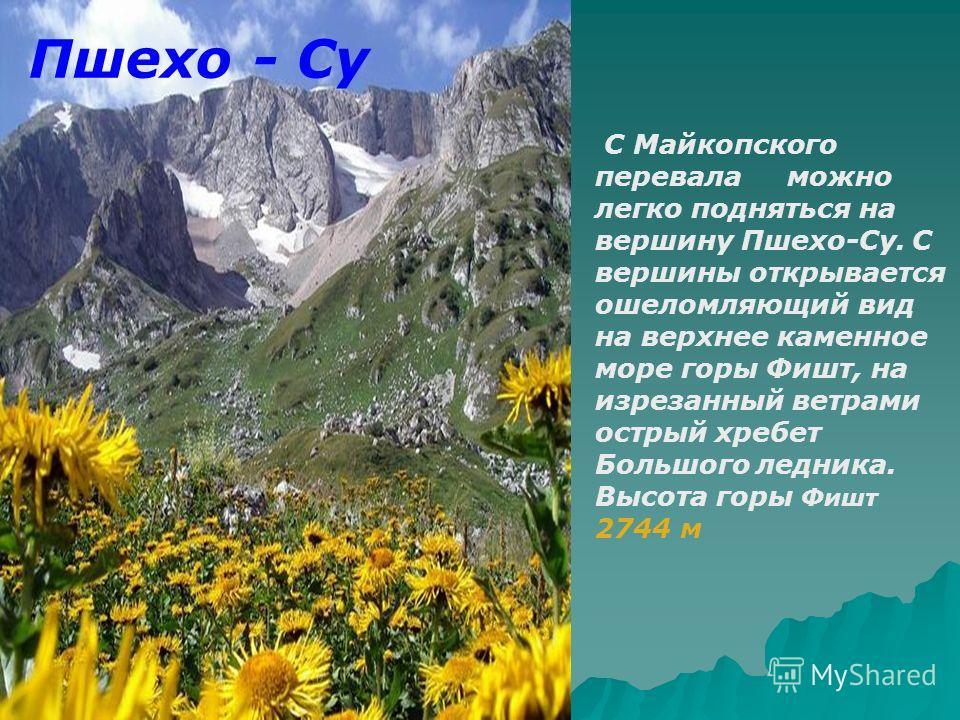 Пшехо - Су С Майкопского перевала можно легко подняться на вершину Пшехо-Су. С вершины открывается ошеломляющий вид на верхнее каменное море горы Фишт, на изрезанный ветрами острый хребет Большого ледника. Высота горы Фишт 2744 м